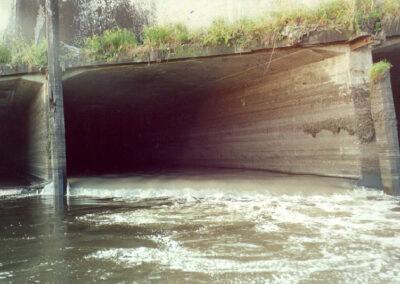 Estudios del sistema pluvio-cloacal